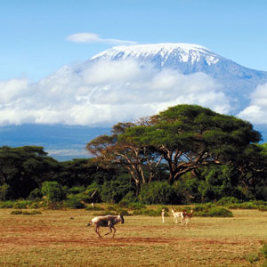 Kenya Vacation Packages